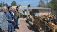 kozan Belediyesi:sosyal medya üzerindeki görüntüler için açıklama
